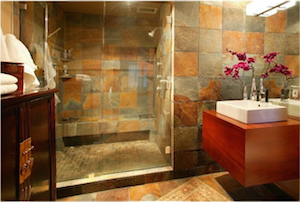 Tacoma Glass Shower Door